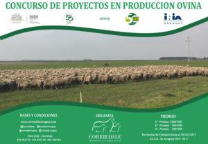 Concurso de proyectos en produccción ovina