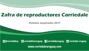 Calendario Zafra Reproductores 2017