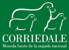 Corriedale Uruguay