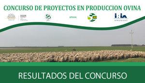Concurso de proyectos en produccción ovina – RESULTADOS