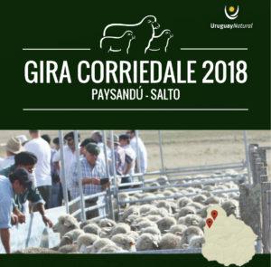Gira Anual Sociedad Criadores de Corriedale del Uruguay 2018